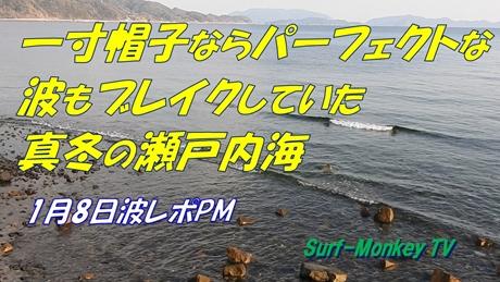0208午後光.jpg