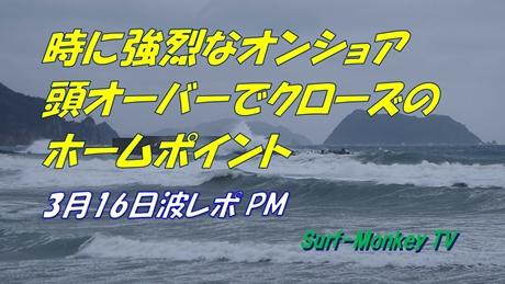 0316夕方.jpg