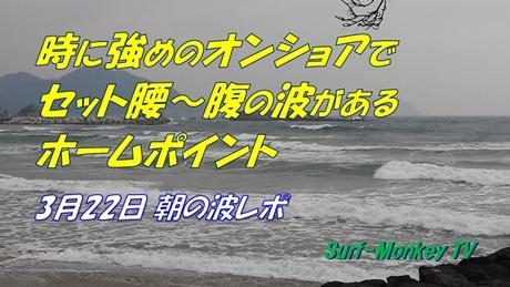 0322朝.jpg