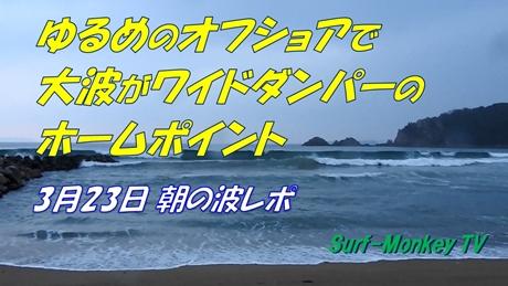 0323朝.jpg