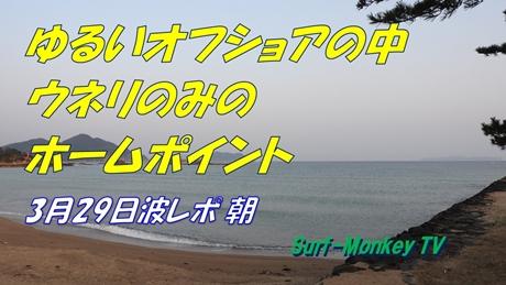 0329朝.jpg
