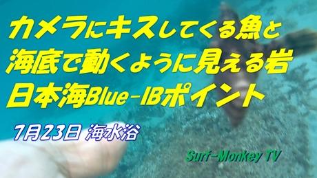 0723魚.jpg
