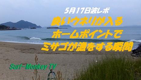 517ミサゴ漁.jpg